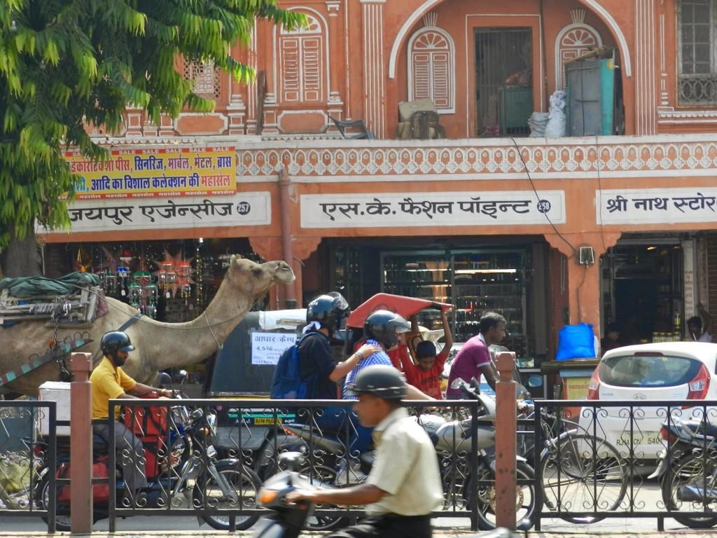Trânsito em Jaipur: carros, motos, tuc tuc, bikes e CAMELO!