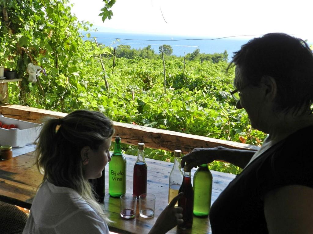 Provando os vinhos artesanais da vovó para decidir qual comprar