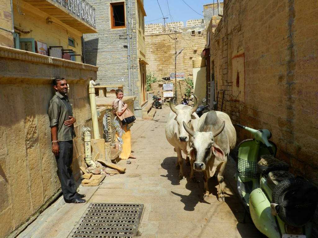 26 jaisalmer fort rajasthan india