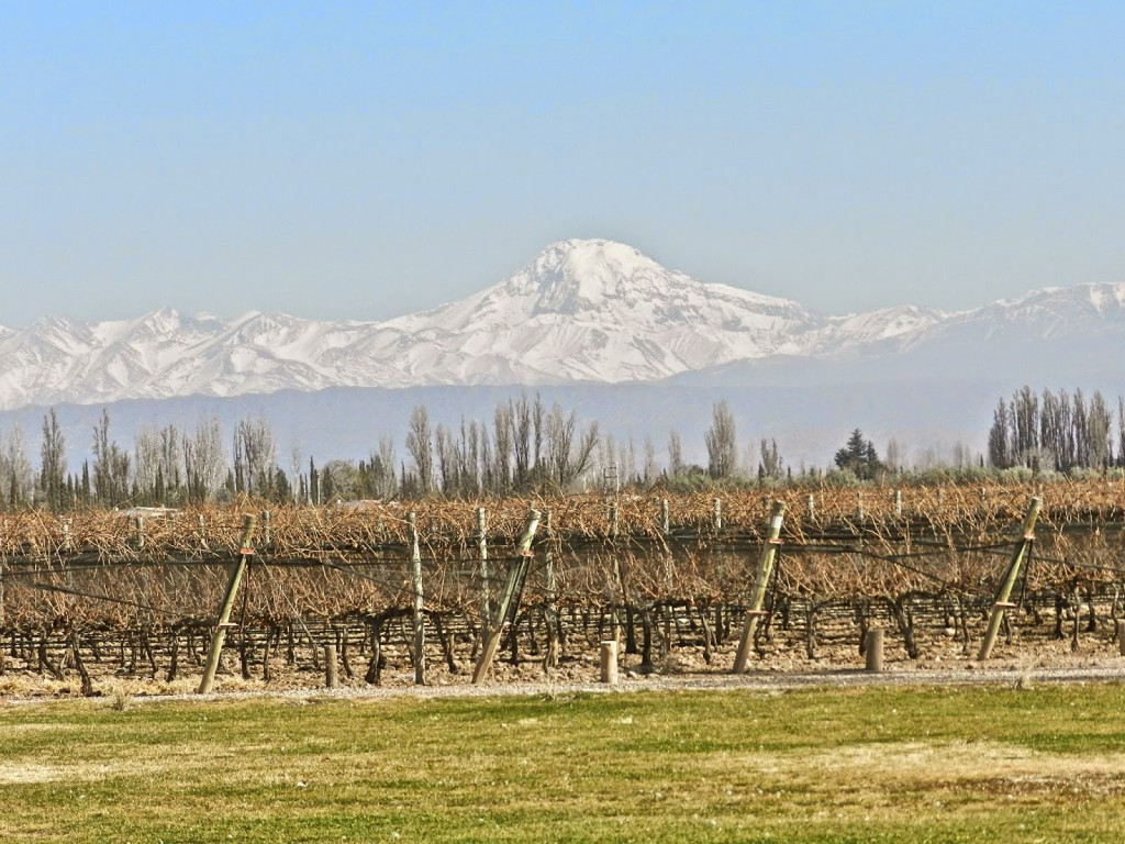 01 LAGARDE bodega vinícola winery tour vinho mendoza argentina dicas viagem