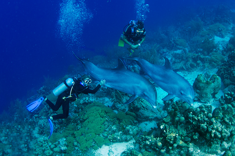 foto: touracao.com