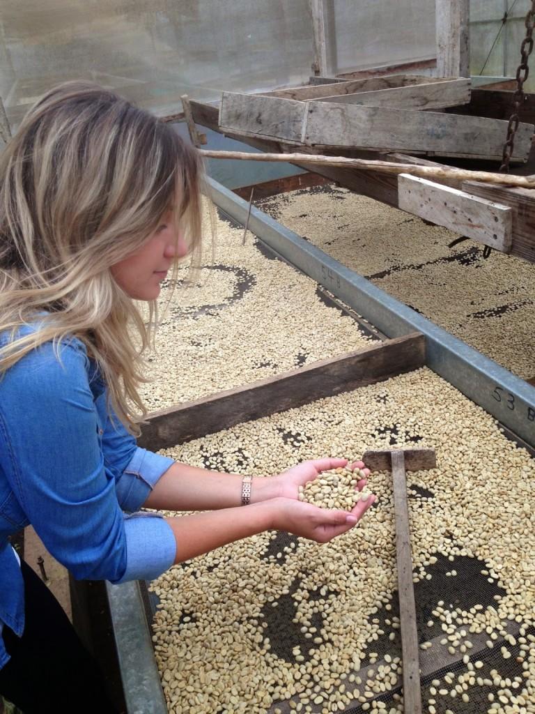 Secagem dos grãos