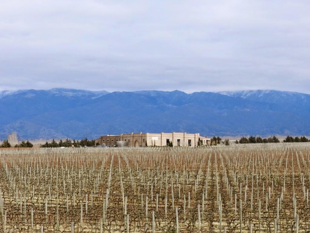 RUTINI 01 bodega vinícola winery tour vinho mendoza argentina dicas viagem