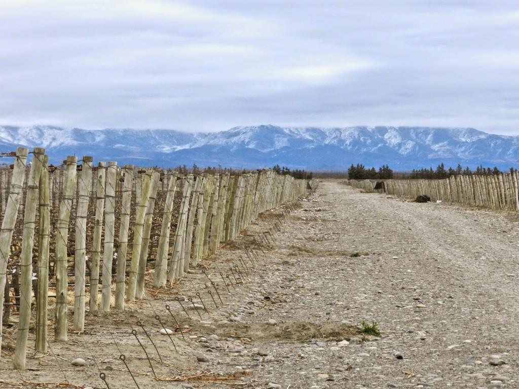 RUTINI 04 bodega vinícola winery tour vinho mendoza argentina dicas viagem
