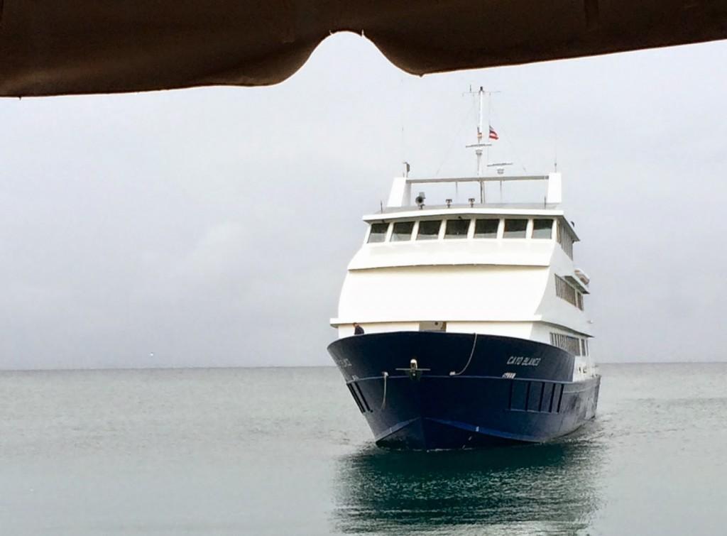 Ferry da volta: maior, mais estável e mais rápido!