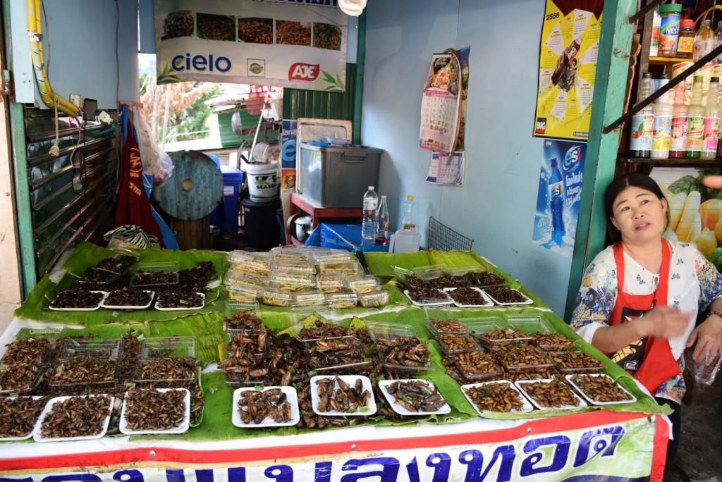 26Comidas tailandesas INSETOS chiang mai 01