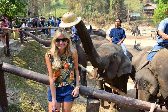 37 maesa elephant camp passeio de elefante chiang mai tailandia