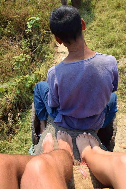 Dica: tire os sapatos para sentir a pele e as dobrinhas do elefante!!