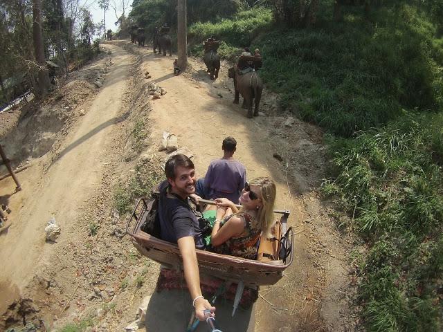40 maesa elephant camp passeio de elefante chiang mai tailandia