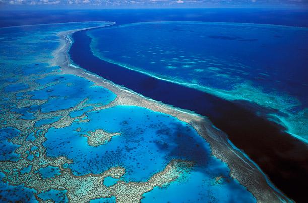 dicas de destinos para lua de mel em novembro - Australia - Grande barreira de Corais
