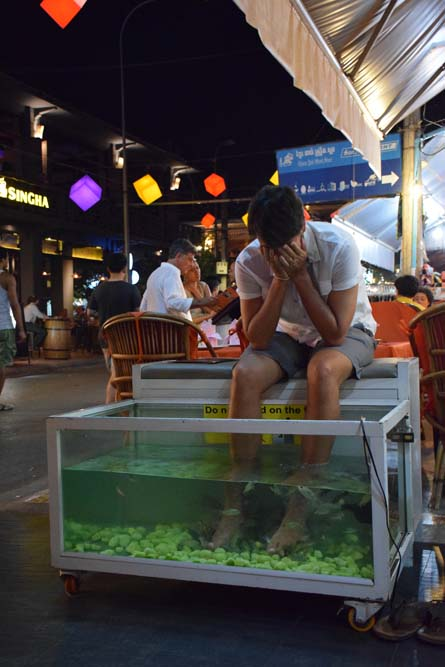 spa pura vida siem reap pub street fish massage