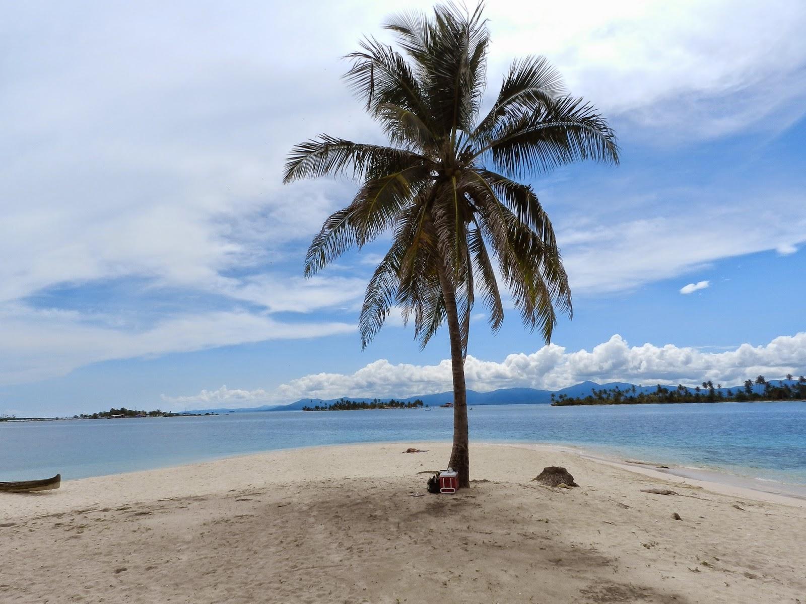 Isla Hierba san blas panama