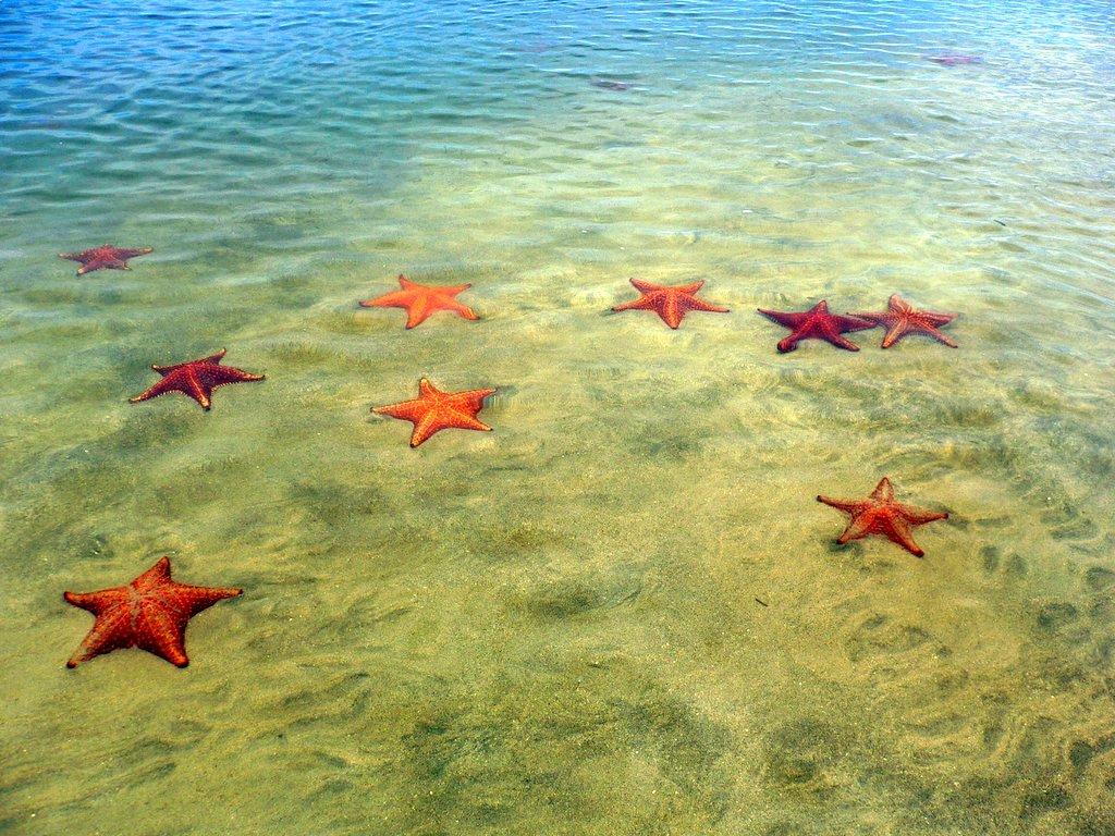 foto: fotopata.blogspot.com