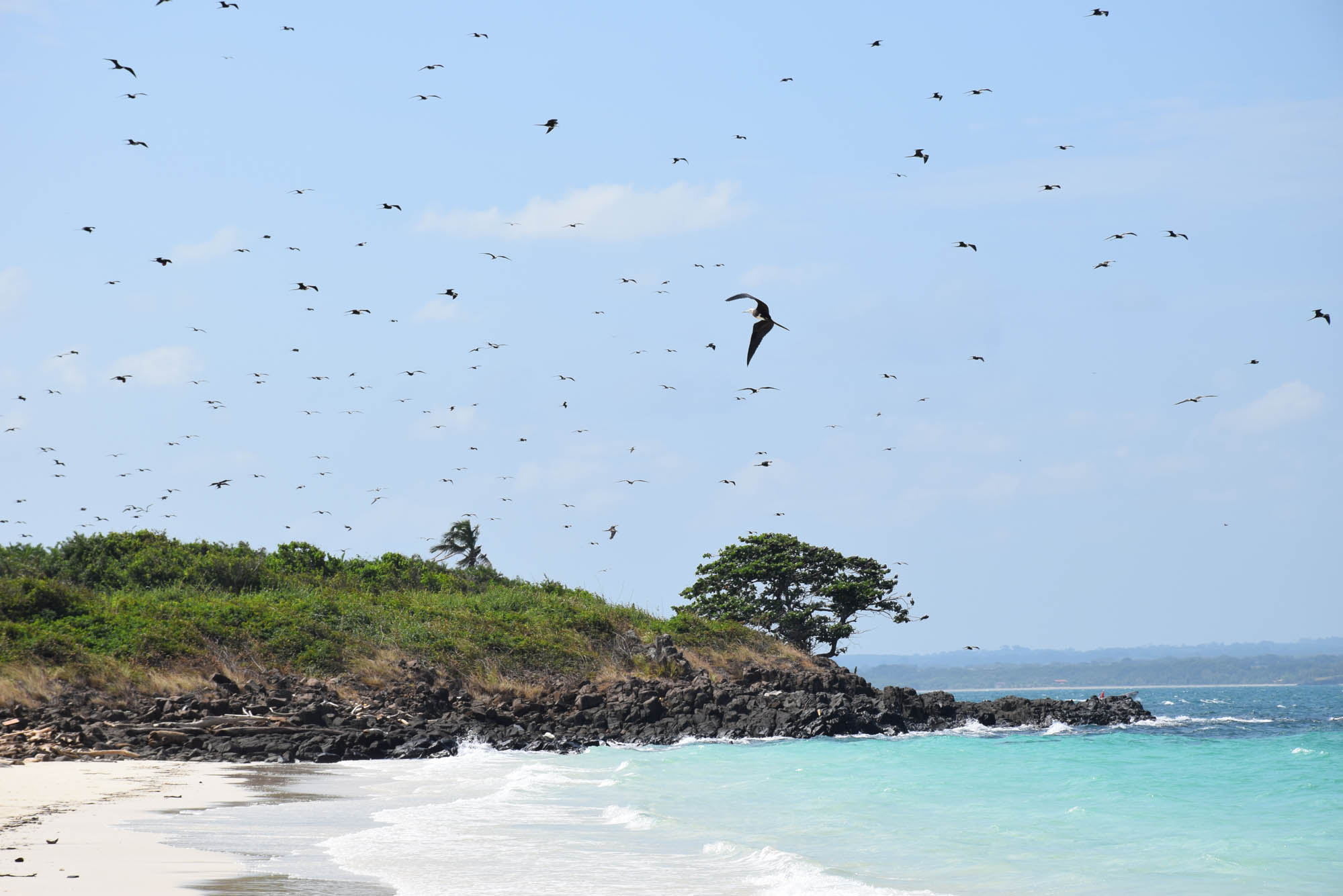 Pedasi-Isla-Iguana-Panama-Andromeda-Playa-Venao-LalaRebelo_0909