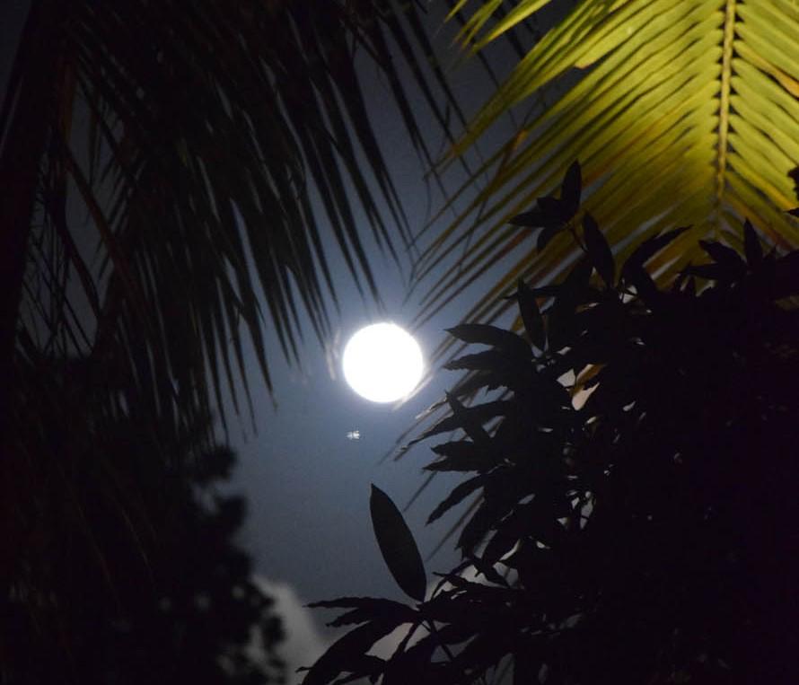 A lua estava ABSURDA nessa noite!