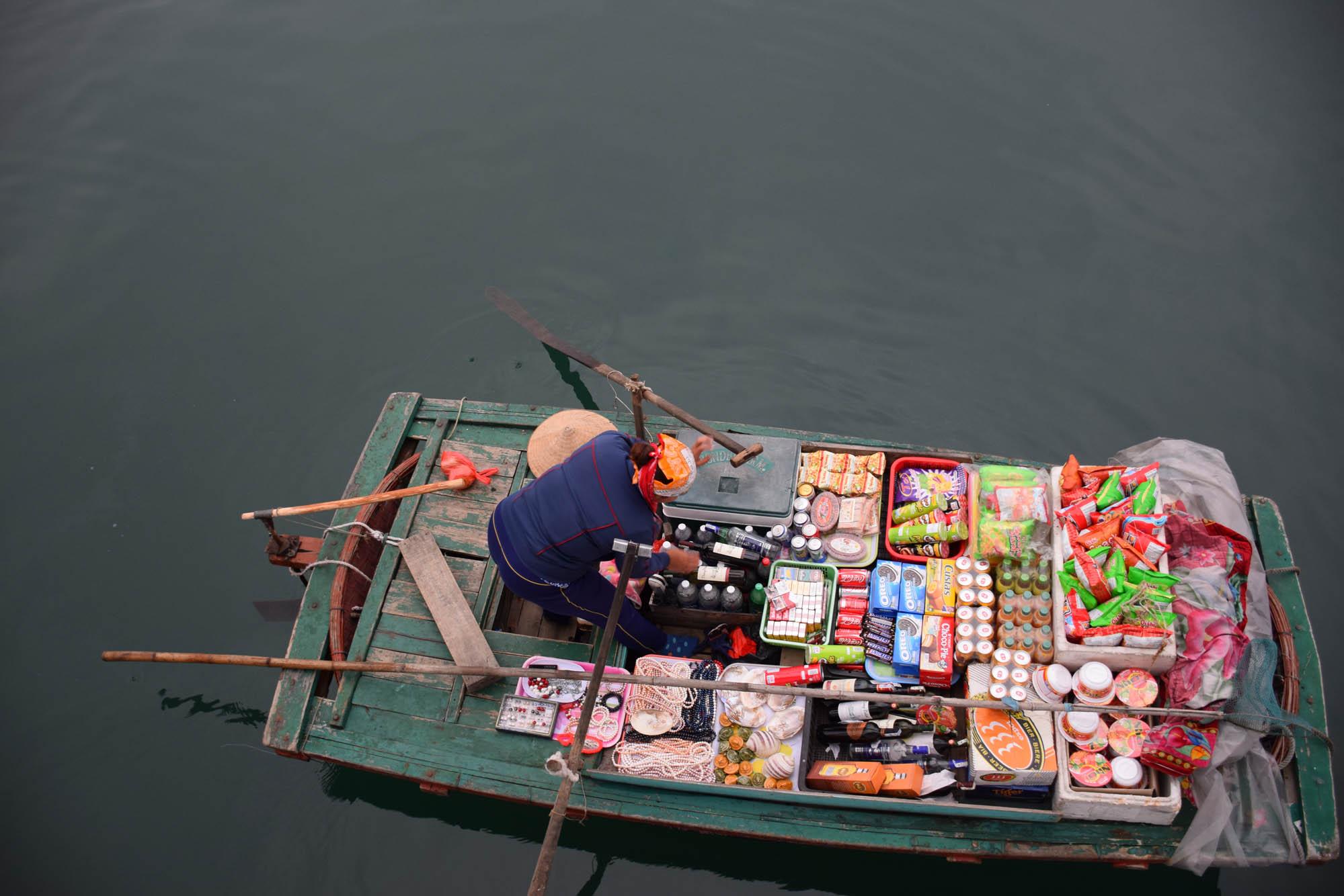 02-HaLongBay-Vietna_0882