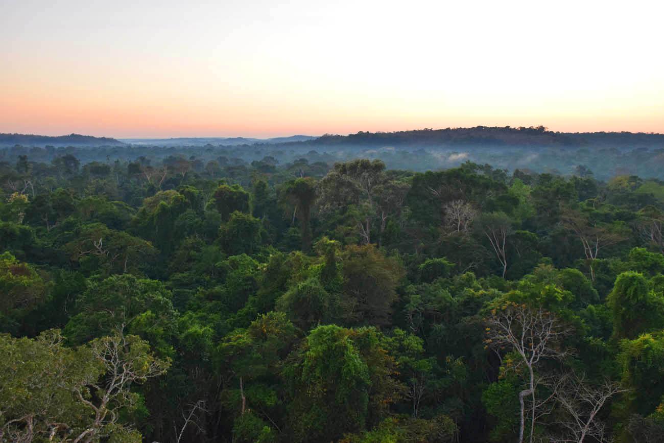 """O amanhecer e os """"rios voadores"""" da Amazônia - Torre 1 do Cristalino Lodge"""