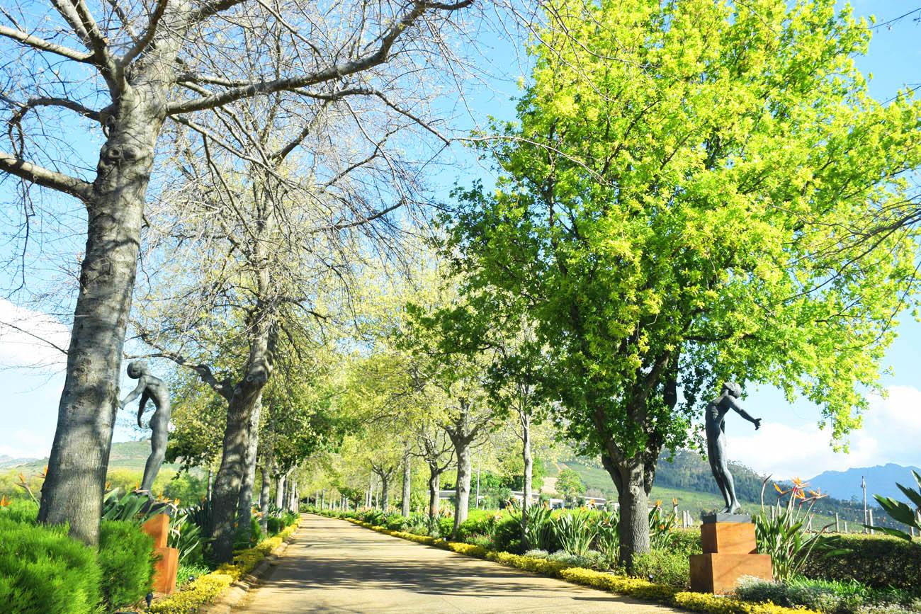 Entrada da Delaire Graff Estate - Stellenbosch | Créditos: Lala Rebelo