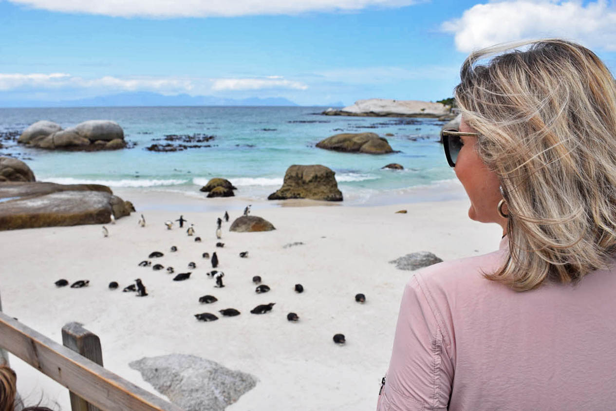 Boulders Beach e seus pinguins | Simon's Town - África do Sul