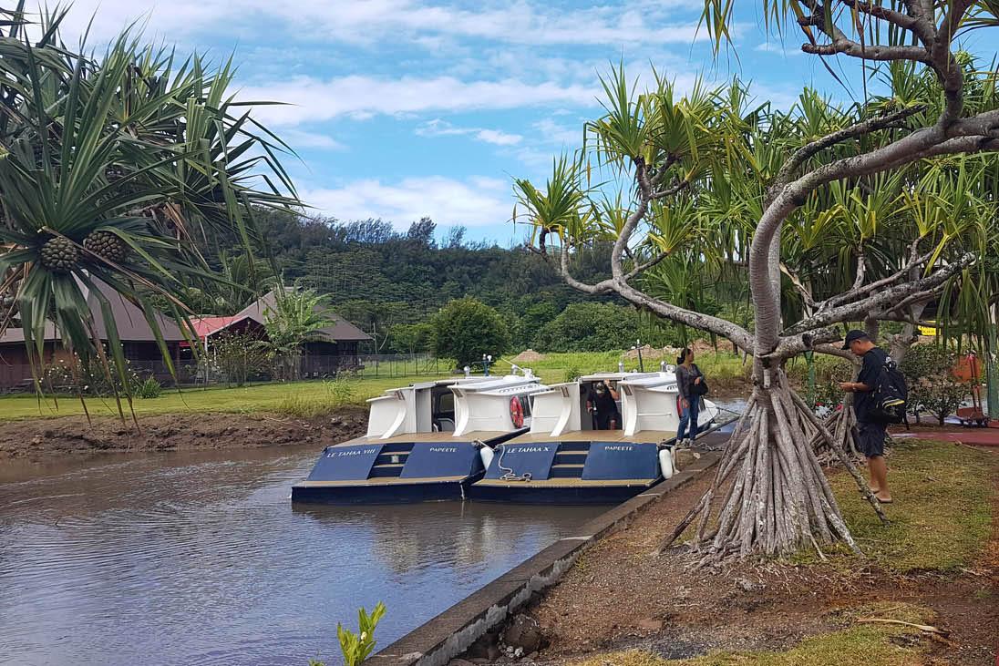 Os barcos que levam os hóspedes do aeroporto de Raiatea até o hotel no motu de Taha'a | foto: Lala Rebelo