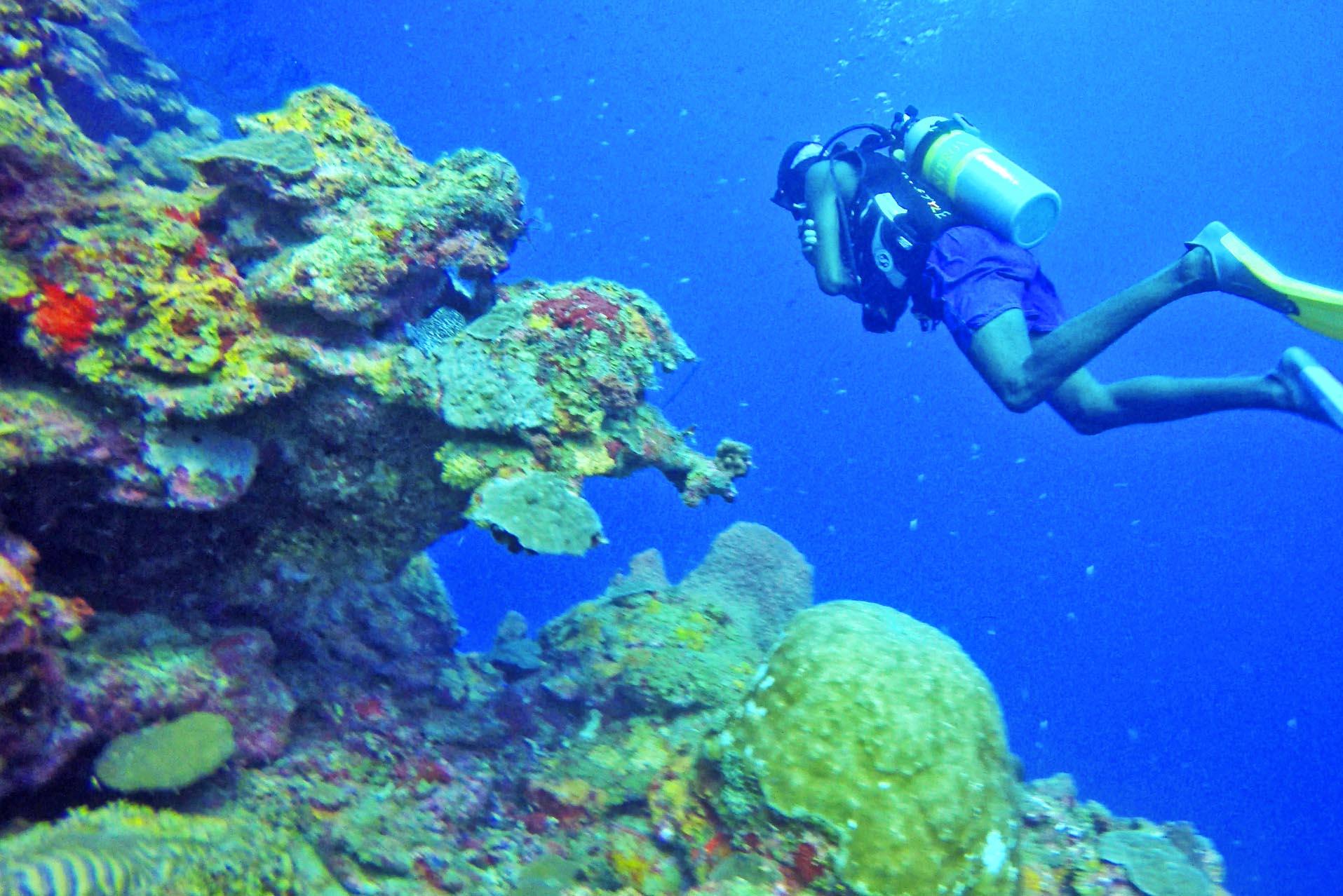 Mergulhando em St Lucia | foto: Lala Rebelo