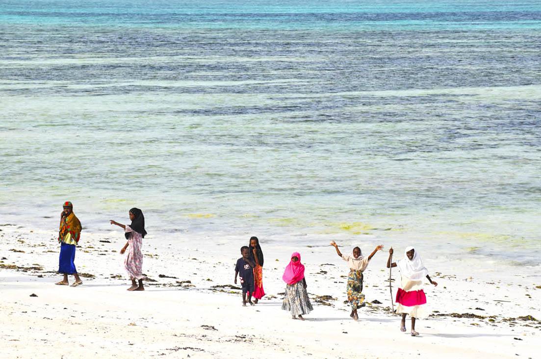 Pingwe Beach zanzibar