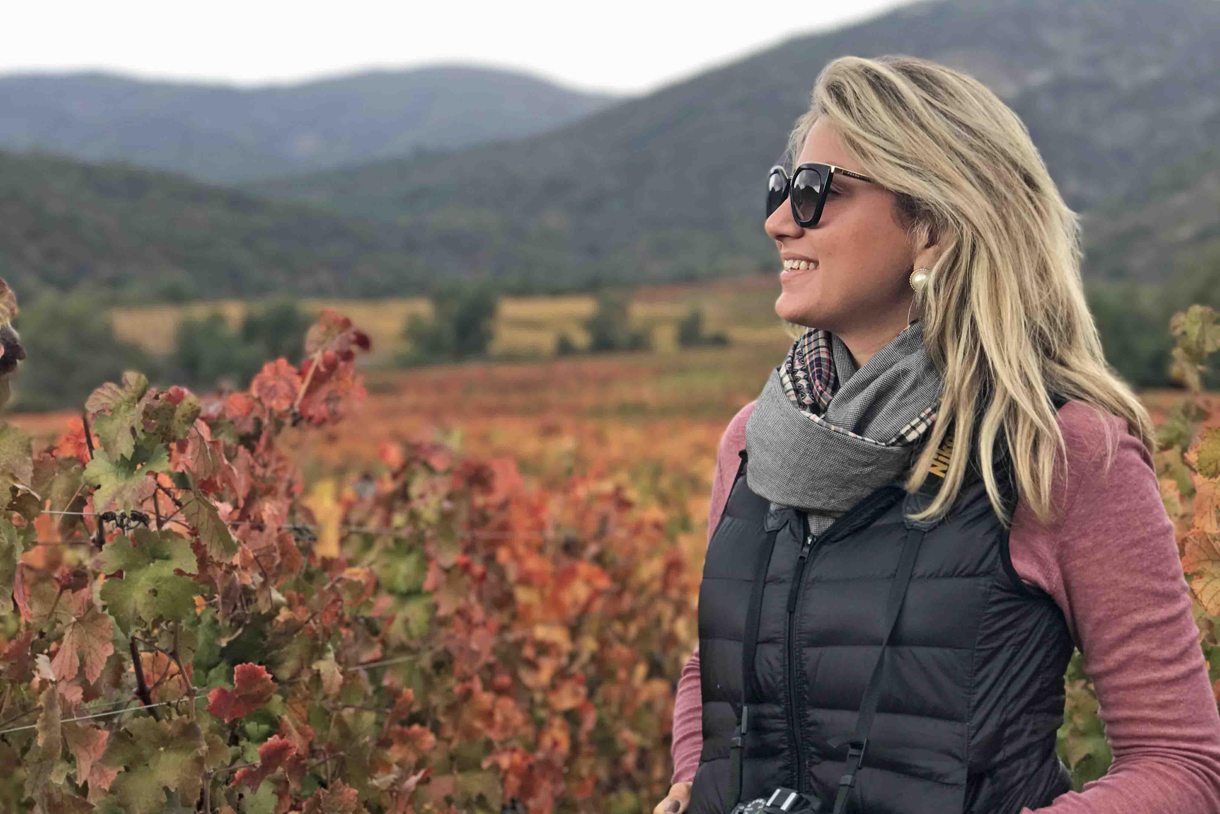 Vina Vik Chile - visita a vinícola - vale do Colchagua - tour e degustação
