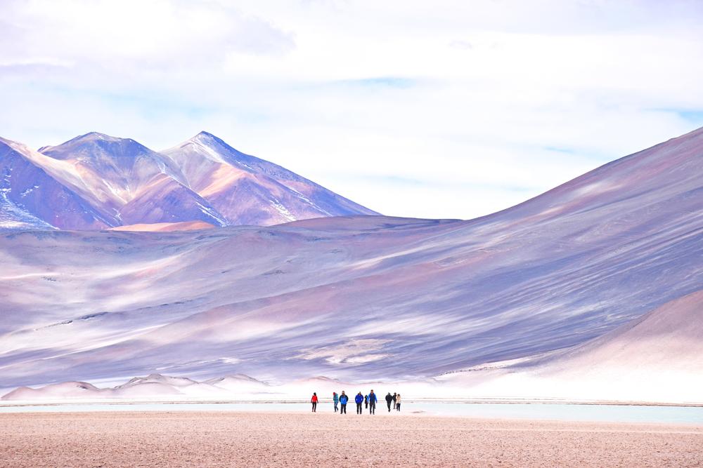 salar de aguas calientes lagunas altiplanicas deserto atacama chile