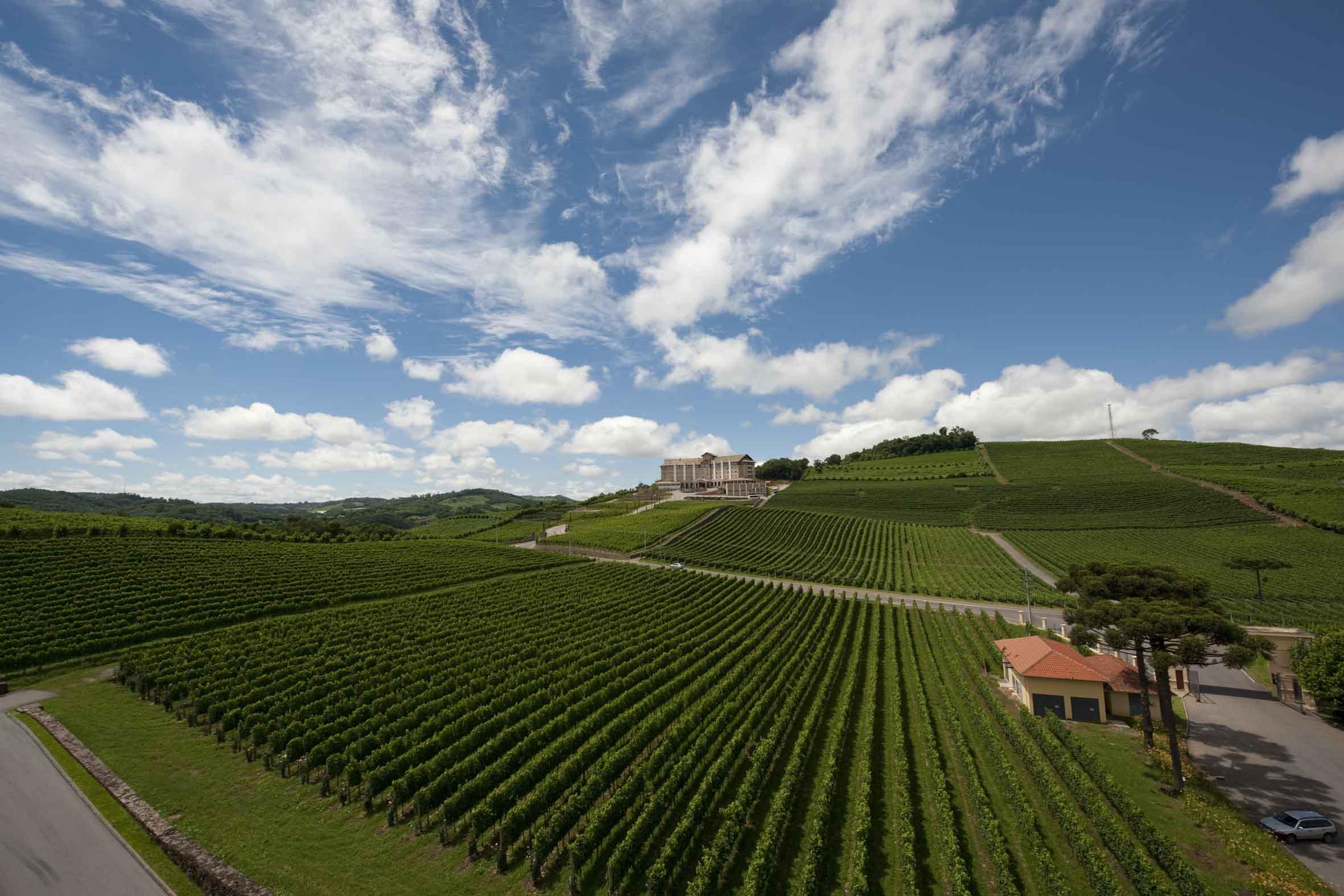 destinos no sul do brasil - rio grande do sul - vale dos vinhedos - bento gonçalves - vinícola miolo