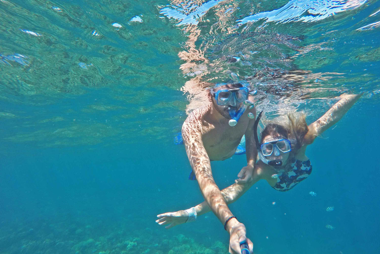 snorkel mushroom reef fiji