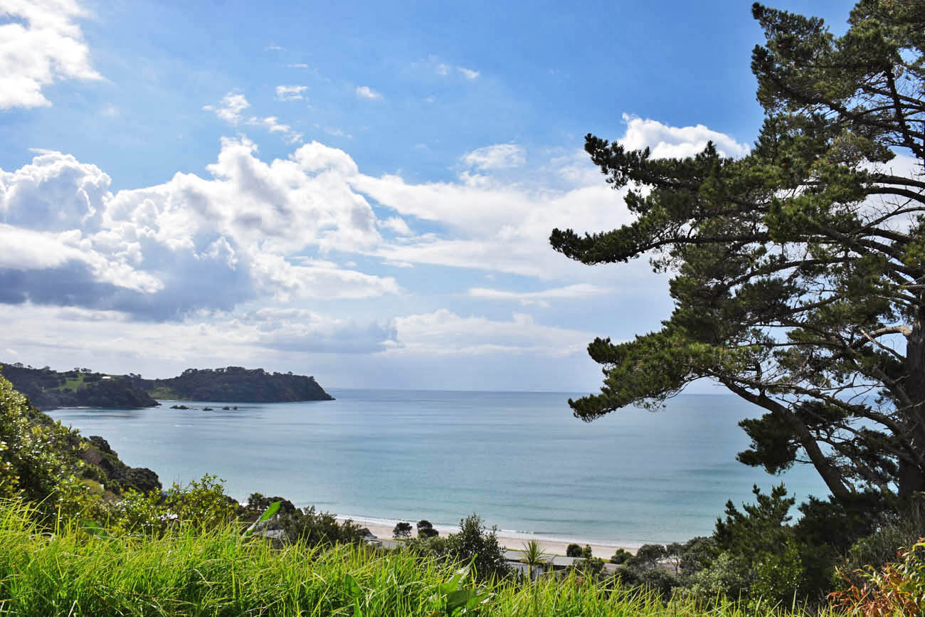 Onetangi Beach Waiheke Island New Zealand