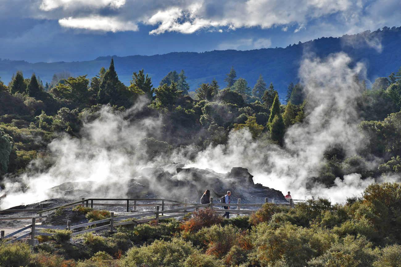 rotorua geothermal activities te puia new zealand