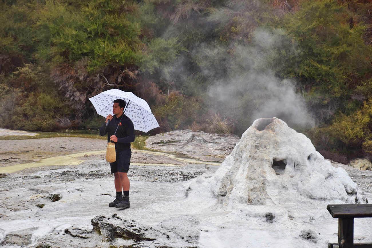 lady knox geyser wai o tapu rotorua new zealand
