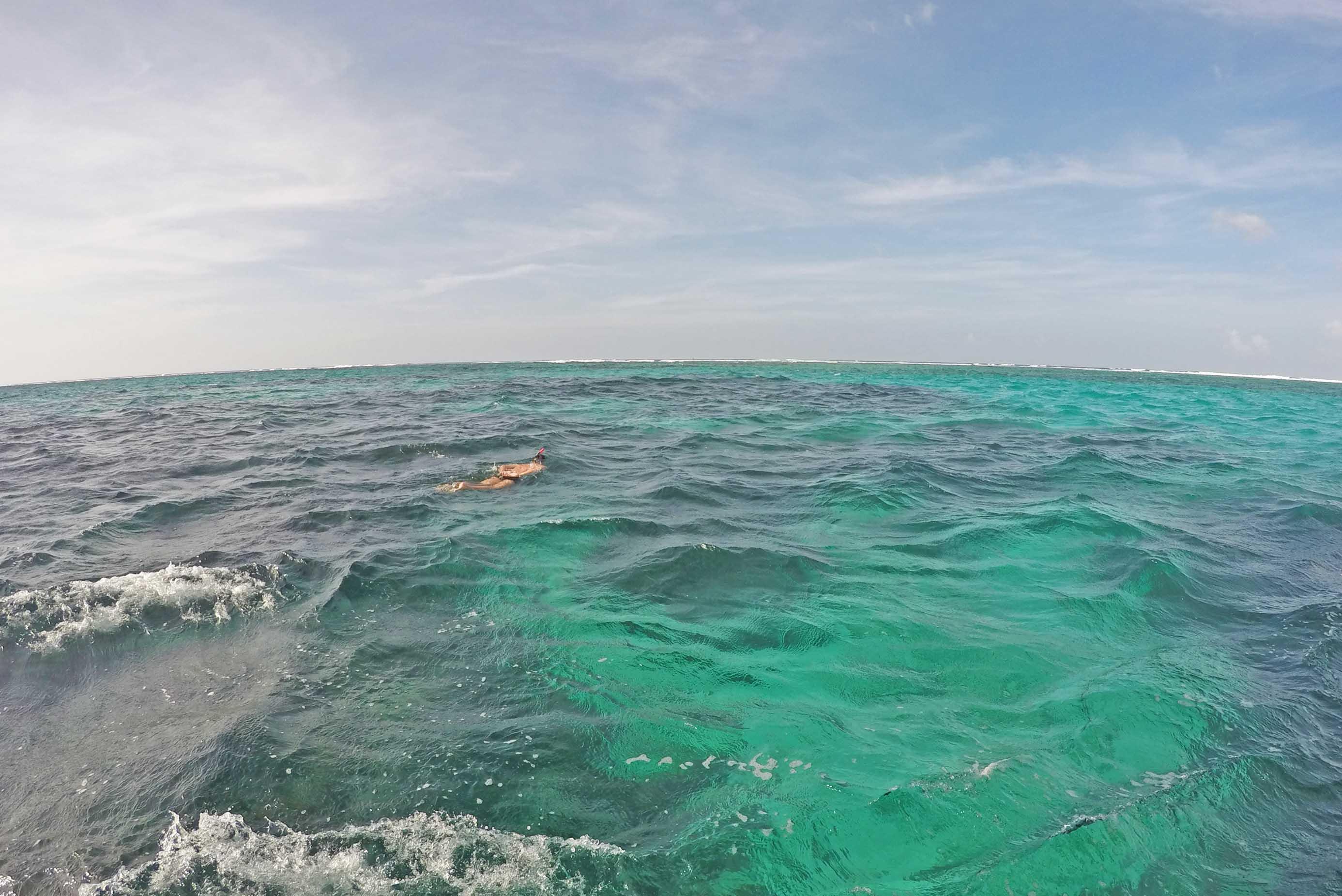 buccoo reef tobago snorkel