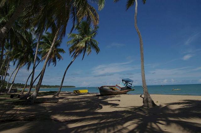 Praia de Japaratinga - Litoral norte de Alagoas - maragogi