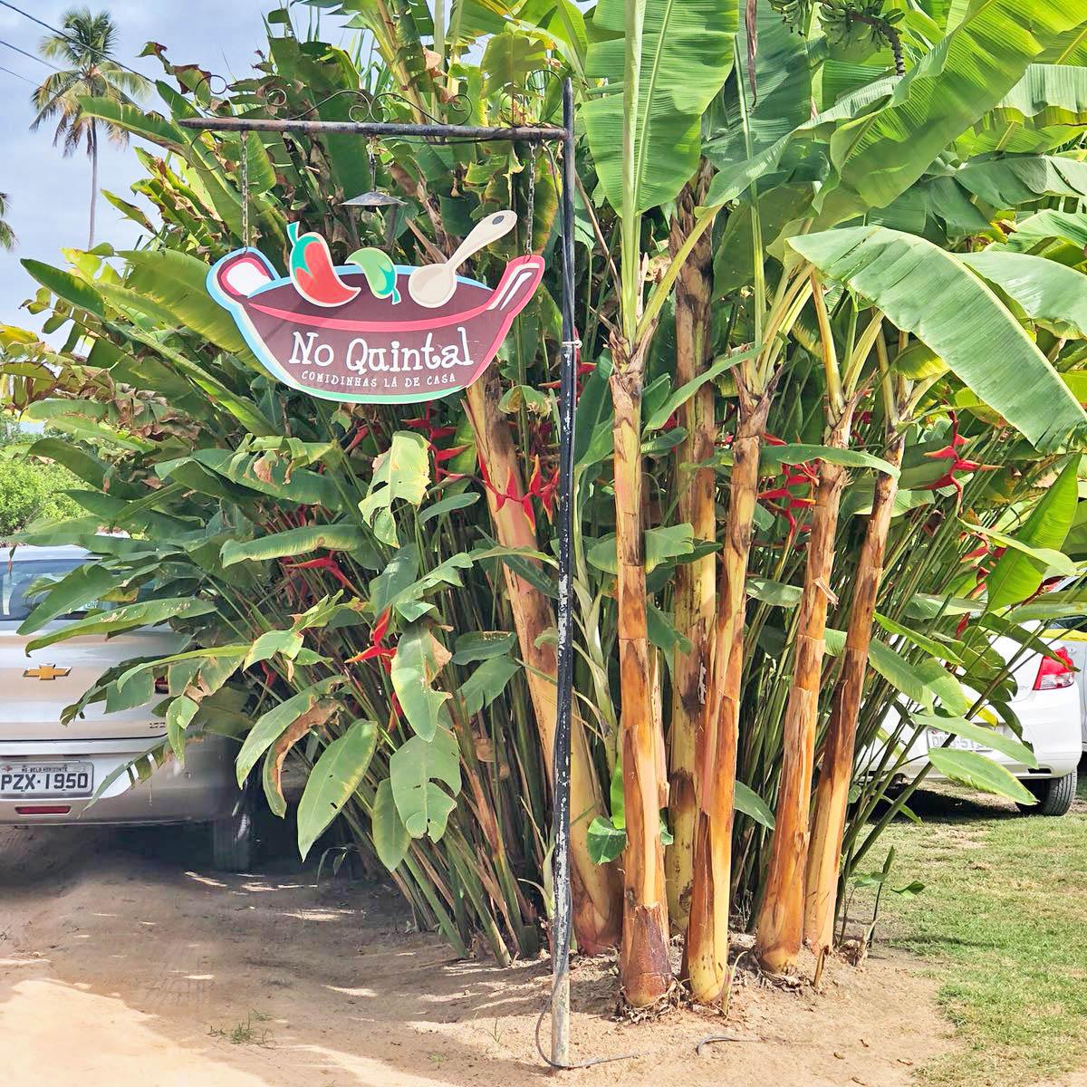 restaurante no quintal praia do toque são miguel dos milagres alagoas