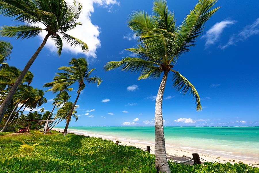 praia do patacho alagoas
