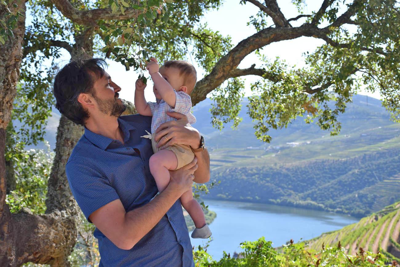 quinta das carvalhas - real companhia velha - vale do rio douro - portugal - vinícolas