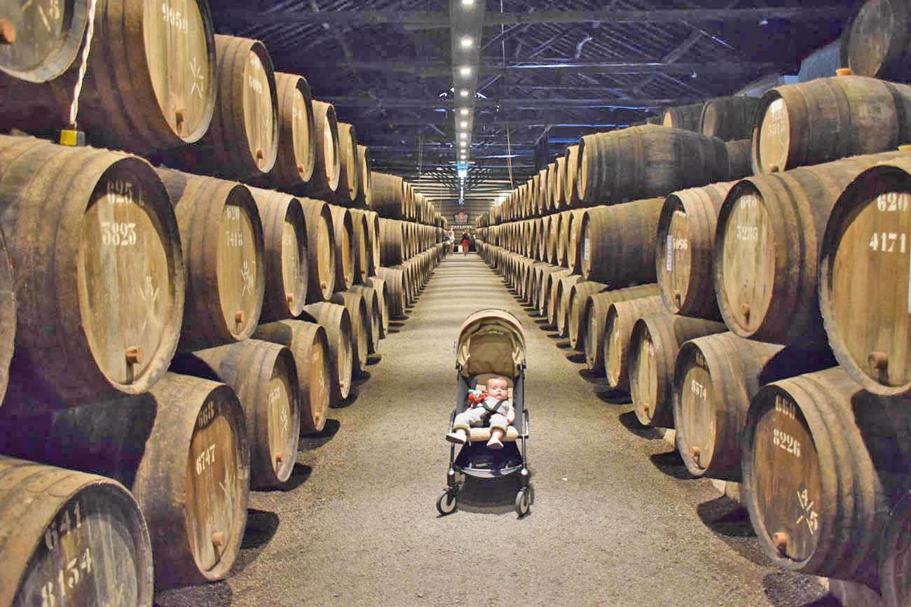 Taylors - cave vinho do porto