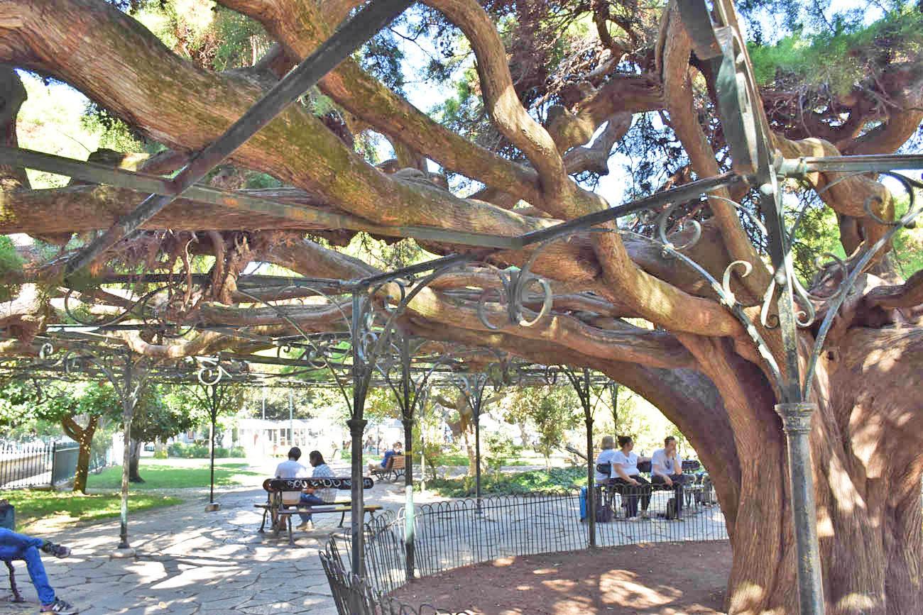 jardim praça principe real lisboa