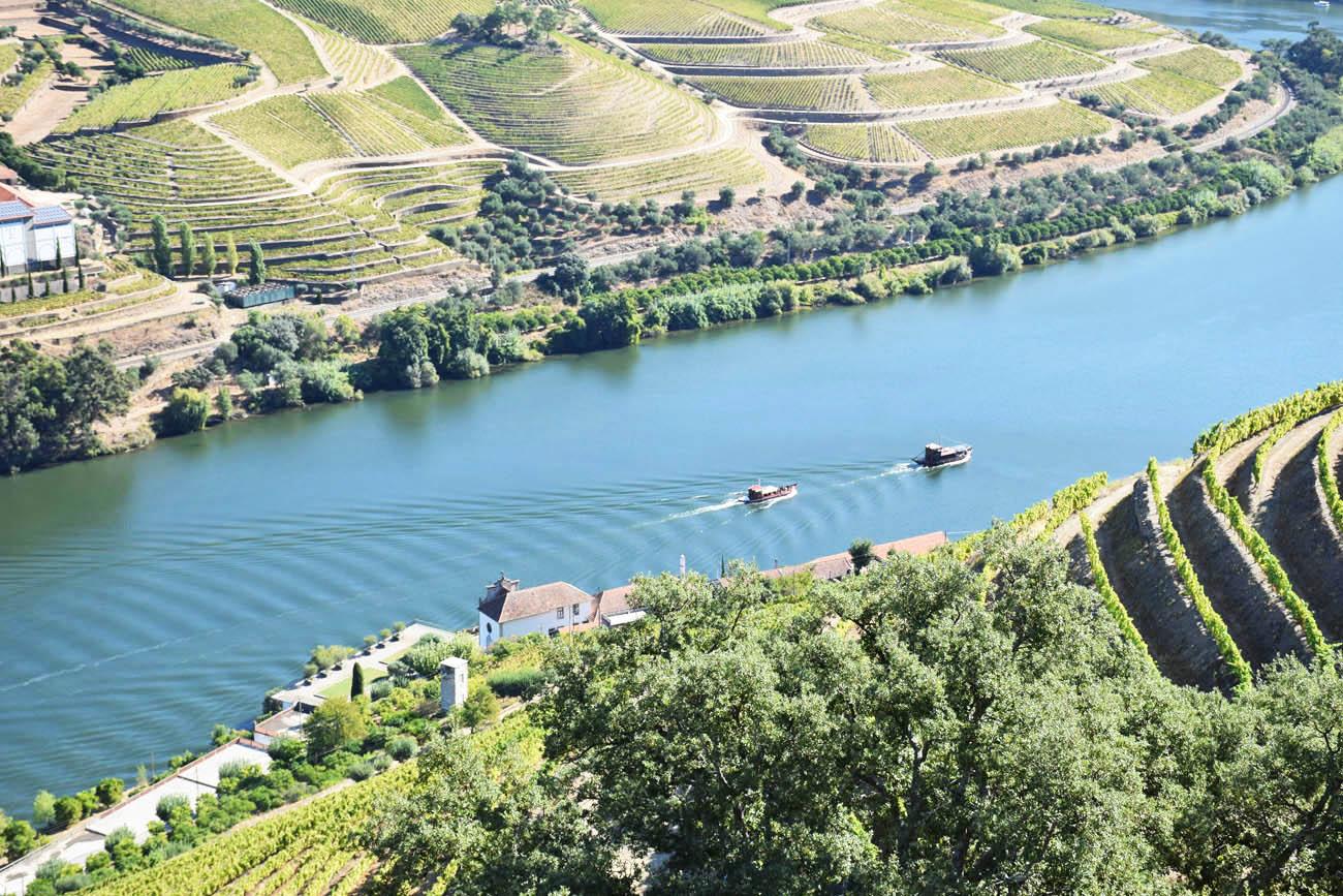 Dicas do Douro - vinícolas quintas Portugal - passeio de barco - cruzeiro rio