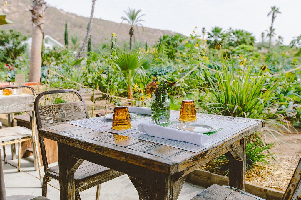 restaurante flora farms san jose del cabo mexico los cabos