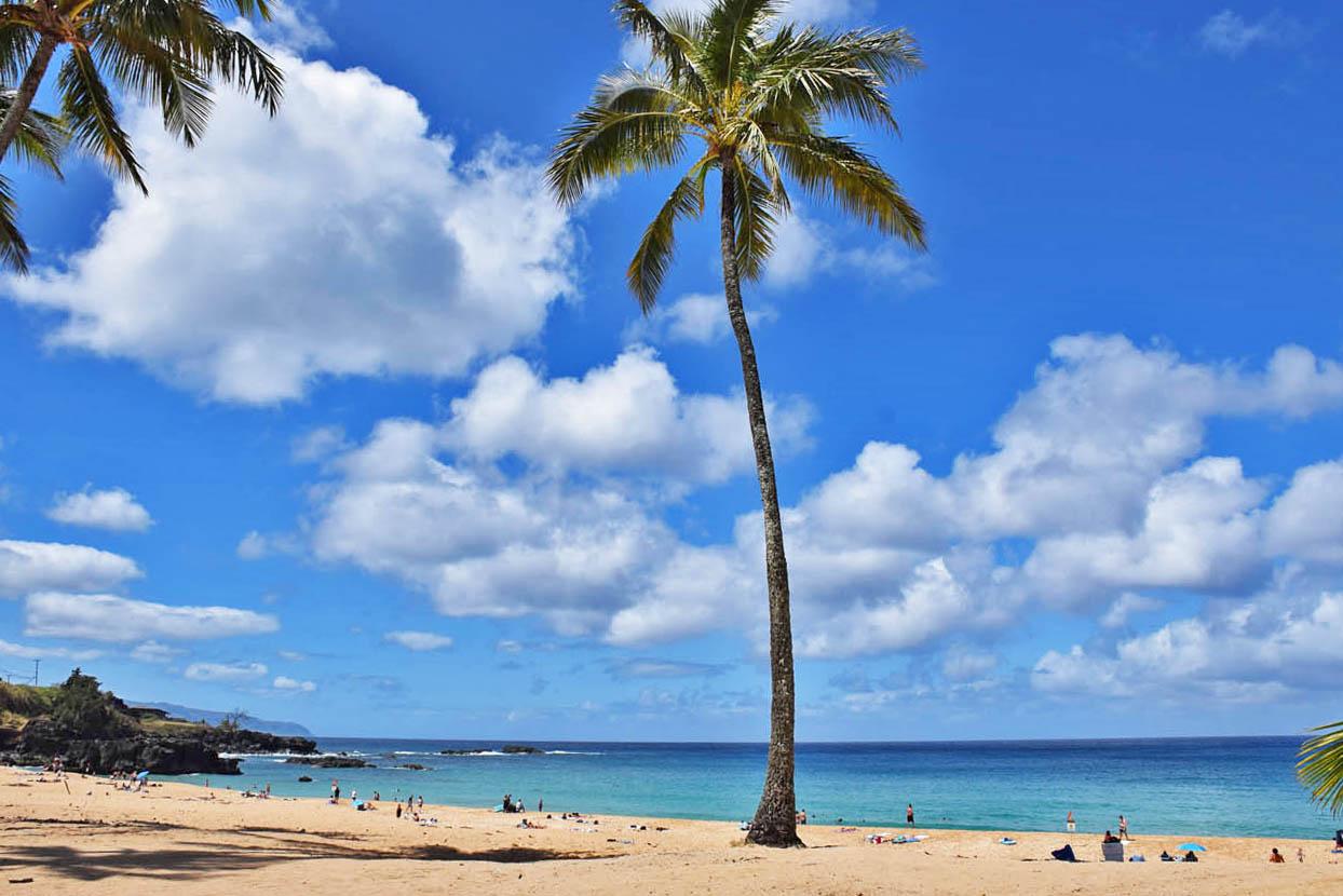 Waimea Bay - North Shore - Oahu - Havaí surf