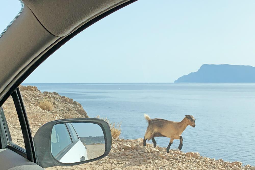 Balos Beach Lagoon - Chania - Creta