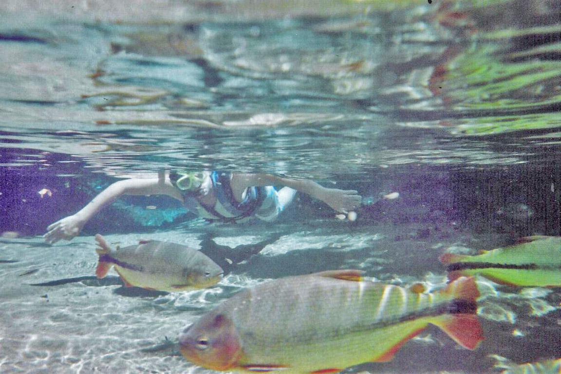 Flutuação Rio Triste - Nobres - o que fazer