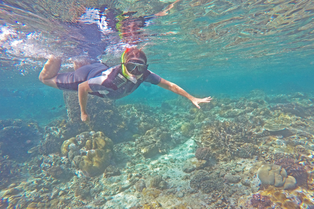 Snorkeling Two Mile Reef Bazaruto Mozambique