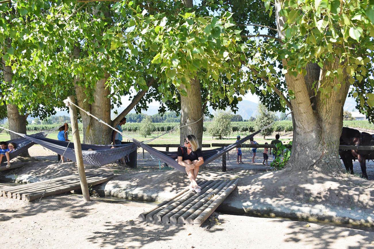 Melhores vinícolas para visitar no Vale do Colchagua - Chile - Viu Manent
