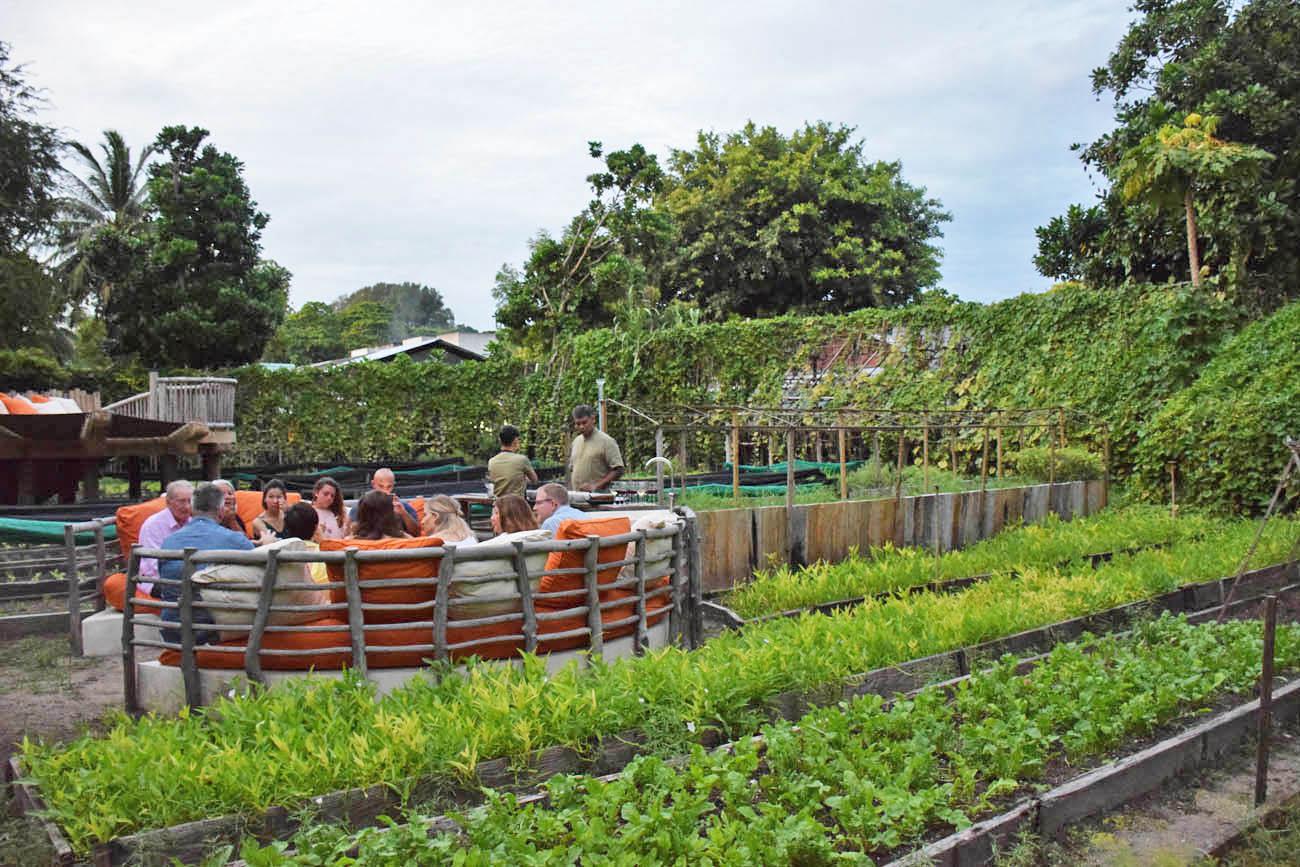 Soneva Fushi Maldives - restaurants gastronomy food - Shades of green