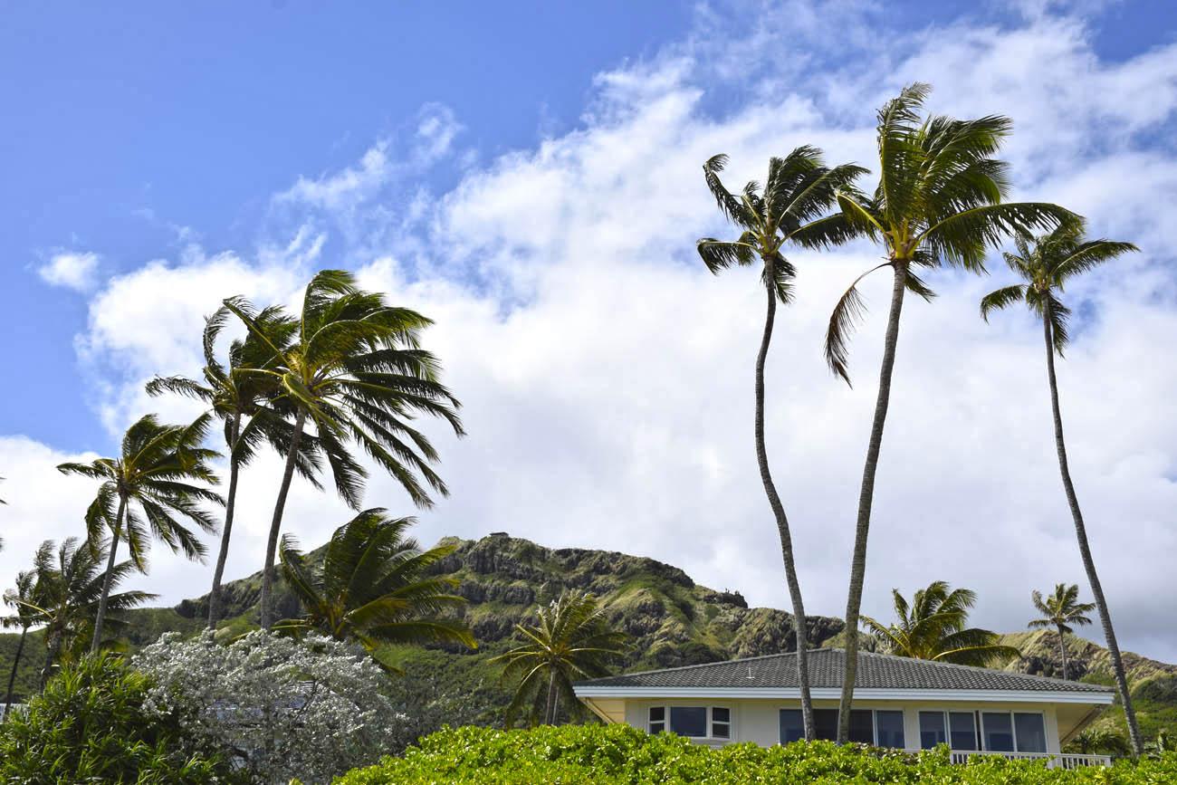 o que fazer em Oahu - praias - Lanikai Pillbox Trail - costa leste - Havaí