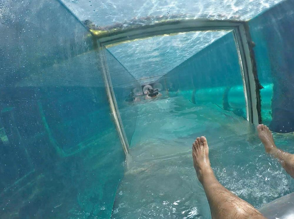 Atlantis Bahamas Nassau - tobogã com tubarões